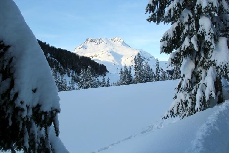 Winterliche Landschaft im Winterurlaub in Lech