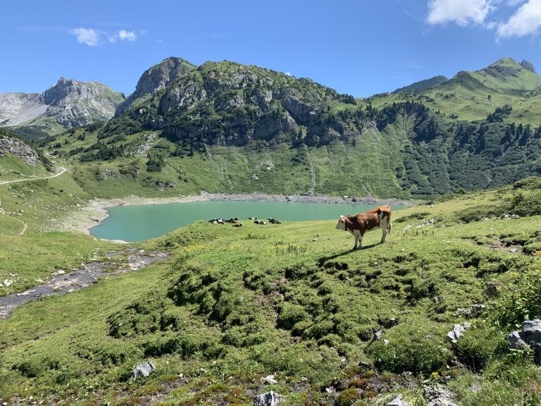 Erkunden Sie beim Wandern die Bergseen in Lech am Arlberg