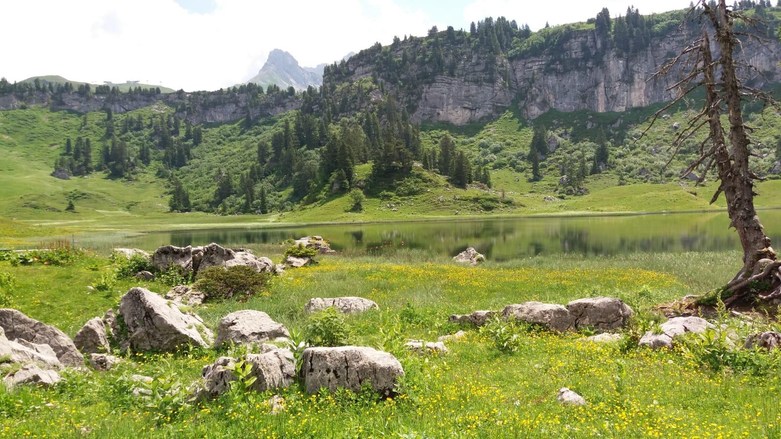 Vielseitige Wanderungen für die ganze Familie in Lech am Arlberg